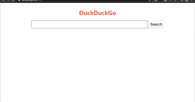 DuckDuckGo Lite: efficient search without ads
