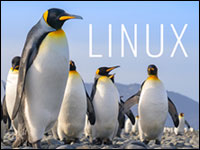 Linuxfx 10: A Smart, Easy Way to Transition From Windows